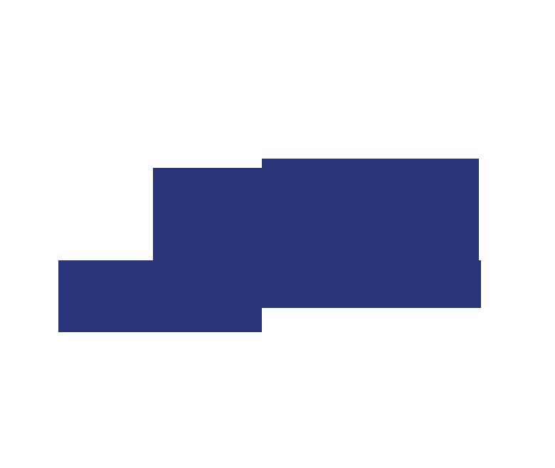 Logo feinfilm.com main